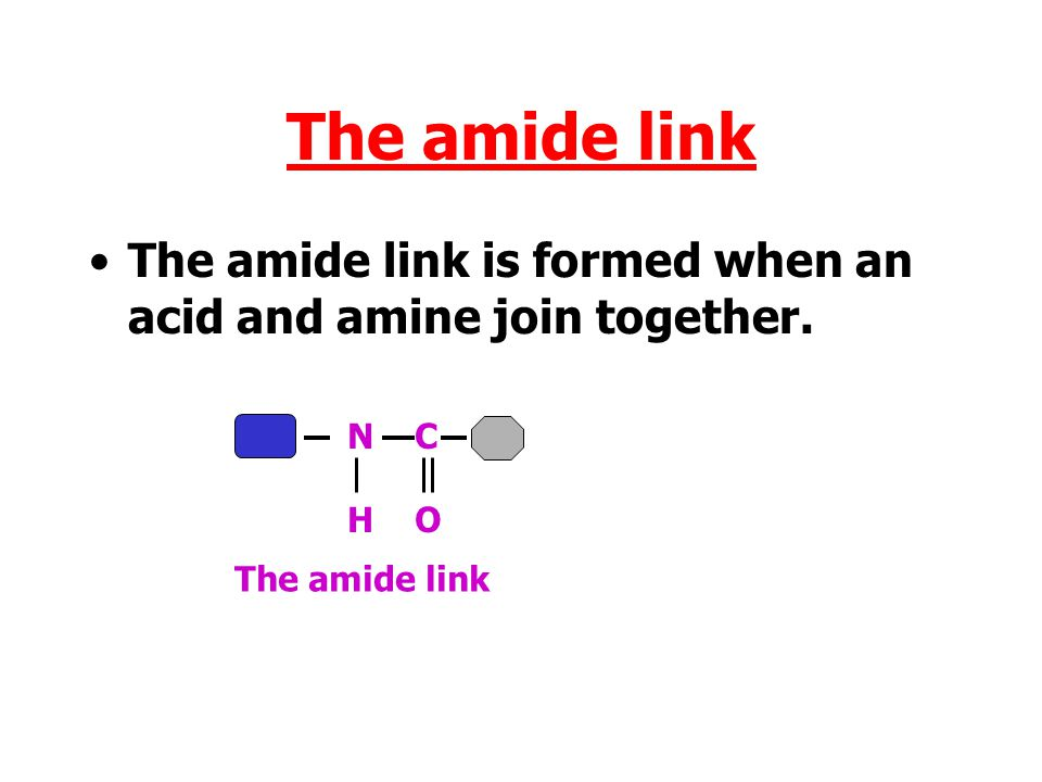 The amide link The amide link is formed when an acid and amine join together. NHNH C OC O H2OH2O