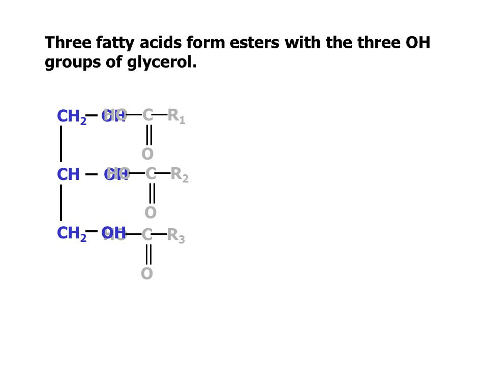 Fats and oils are esters.