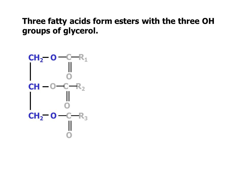 HO C R 3 O CH 2 OH CH OH CH 2 OH HO C R 2 O HO C R 1 O Three fatty acids form esters with the three OH groups of glycerol.