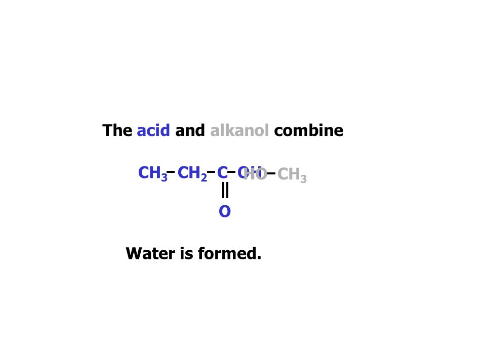 HO CH 3 The acid and alkanol combine