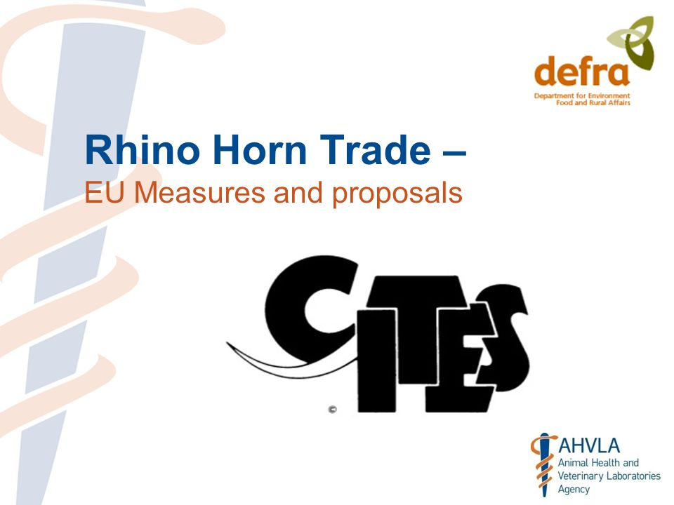 Rhino Horn Trade – EU Measures and proposals