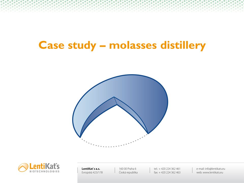 Case study – molasses distillery