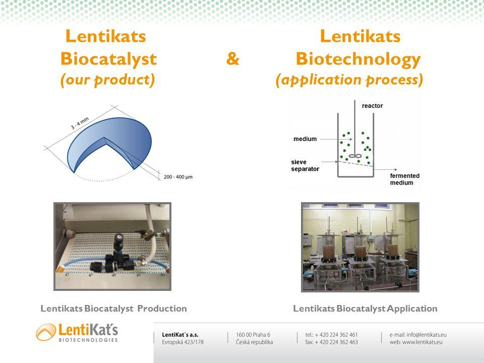 Lentikats Lentikats Biocatalyst & Biotechnology (our product) (application process) Lentikats BiocatalystProduction Lentikats Biocatalyst Application