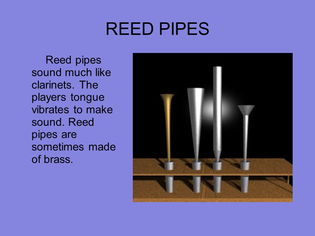 REED PIPES Reed pipes sound much like clarinets. The players tongue vibrates to make sound. Reed pipes are sometimes made of brass.
