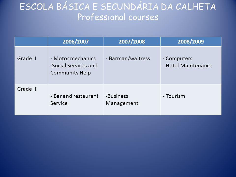 ESCOLA BÁSICA E SECUNDÁRIA DA CALHETA Professional courses 2006/20072007/20082008/2009 Grade II- Motor mechanics -Social Services and Community Help -