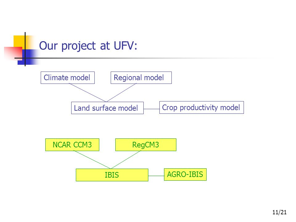 12/21 Our project at UFV: NCAR CCM3RegCM3 IBIS AGRO-IBIS IBIS is a land surface model that simulates fluxes between the vegetation and the atmosphere.