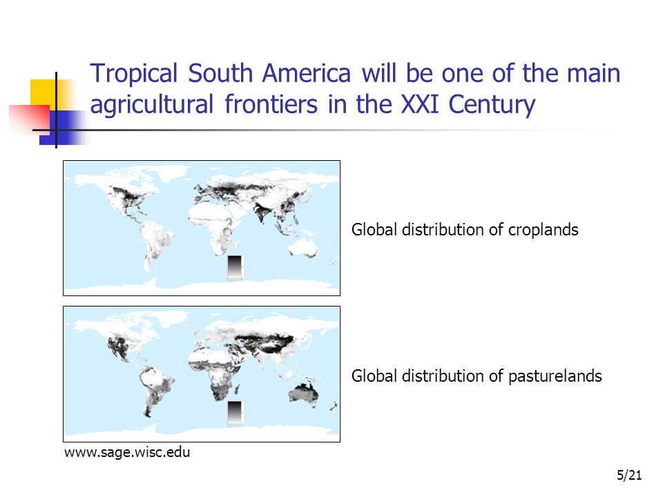 5/21 Tropical South America will be one of the main agricultural frontiers in the XXI Century Global distribution of croplands Global distribution of pasturelands www.sage.wisc.edu