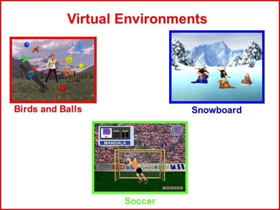 Birds and Balls Virtual Environments Snowboard Soccer