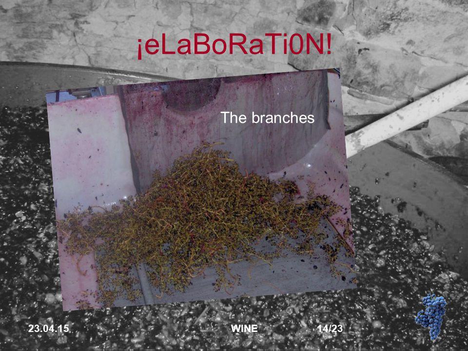 23.04.15 WINE 14/23 ¡eLaBoRaTi0N! The branches