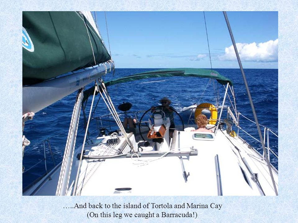…..And back to the island of Tortola and Marina Cay (On this leg we caught a Barracuda!)