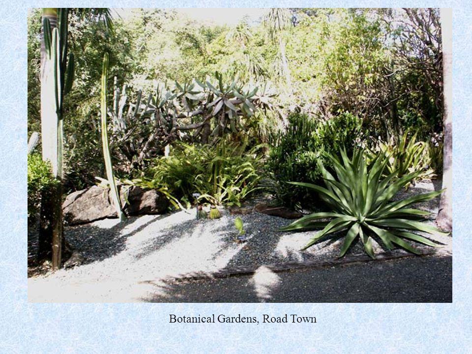 Botanical Gardens, Road Town