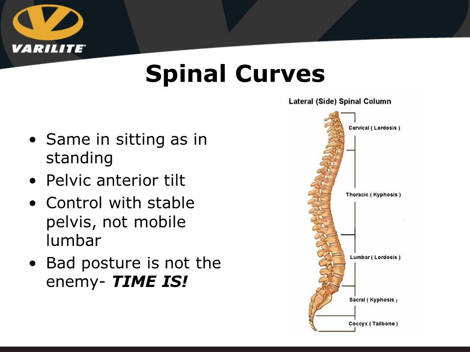 Spinal Curves Same in sitting as in standing Pelvic anterior tilt Control with stable pelvis, not mobile lumbar Bad posture is not the enemy- TIME IS!