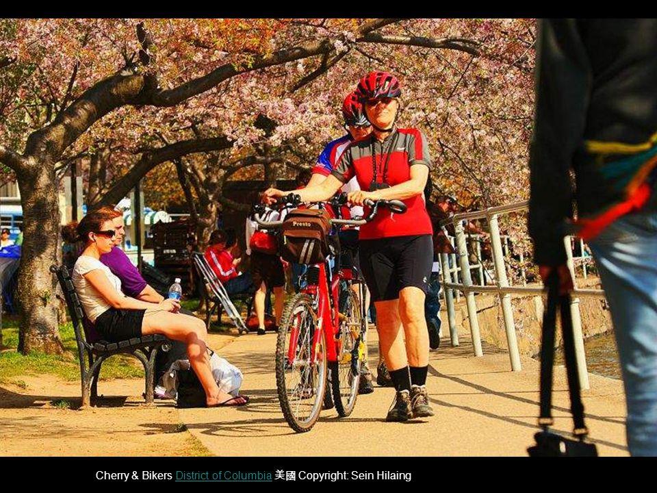Cherry & Bikers District of Columbia 美國 Copyright: Sein HilaingDistrict of Columbia