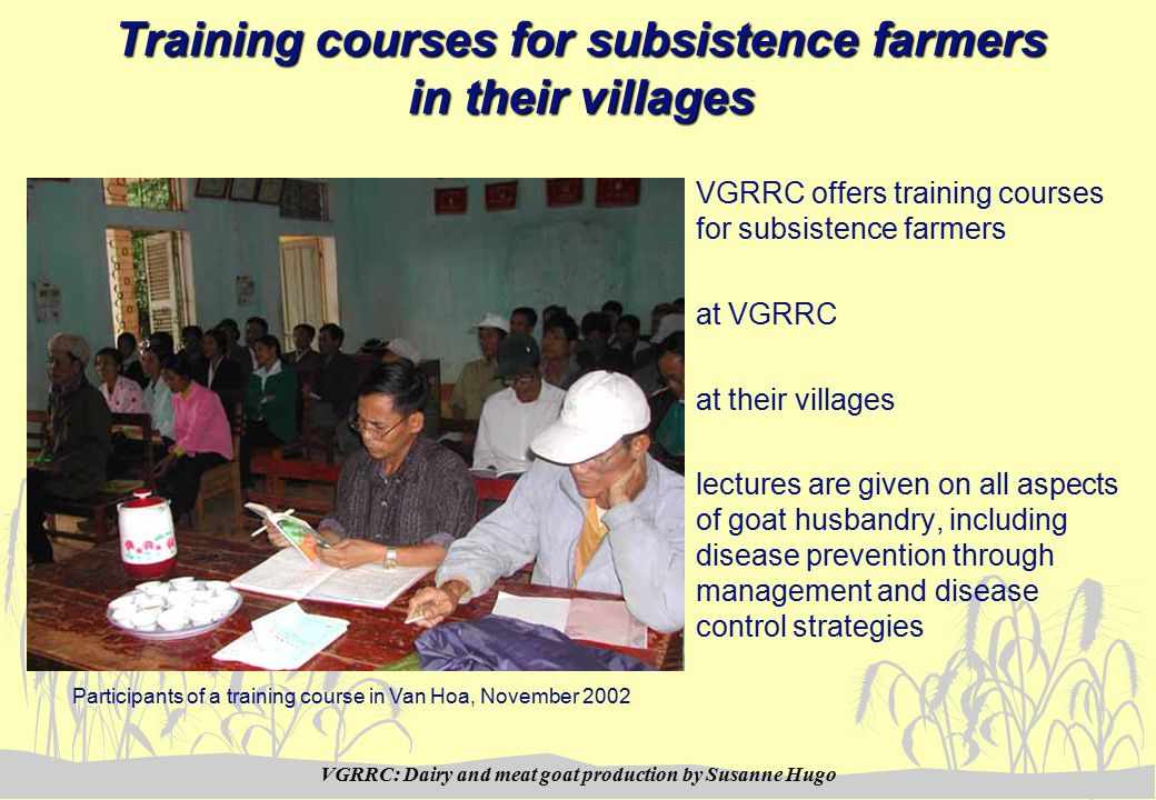 VGRRC: Dairy and meat goat production by Susanne Hugo Training courses for subsistence farmers in their villages VGRRC offers training courses for subsistence farmers at VGRRC at their villages lectures are given on all aspects of goat husbandry, including disease prevention through management and disease control strategies Participants of a training course in Van Hoa, November 2002