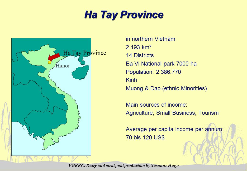 VGRRC: Dairy and meat goat production by Susanne Hugo Ha Tay Province in northern Vietnam 2.193 km² 14 Districts Ba Vi National park 7000 ha Population: 2.386.770 Kinh Muong & Dao (ethnic Minorities) Main sources of income: Agriculture, Small Business, Tourism Average per capita income per annum: 70 bis 120 US$ Ha Tay Province Hanoi