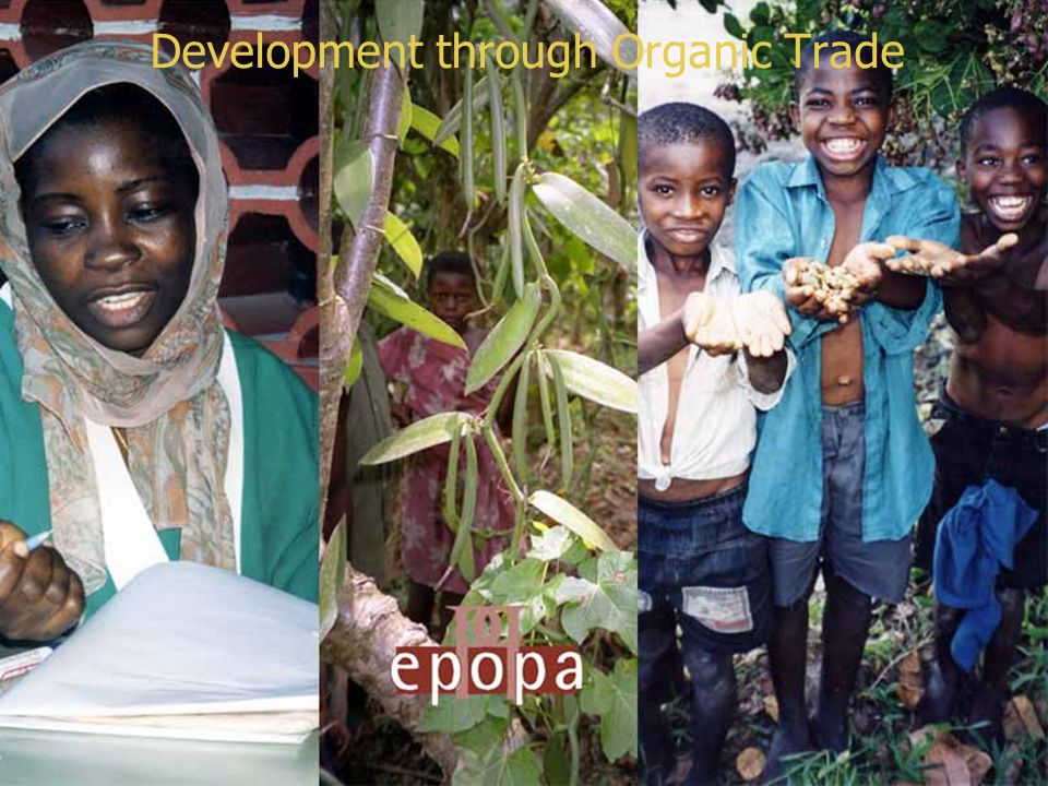 E X P O R T P R O M O T I O N O F O R G A N I C P R O D U C T S F R O M A F R I C A Export Promotion of Organic Products from Africa
