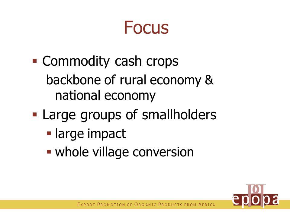 E X P O R T P R O M O T I O N O F O R G A N I C P R O D U C T S F R O M A F R I C A Focus  Commodity cash crops backbone of rural economy & national economy  Large groups of smallholders  large impact  whole village conversion