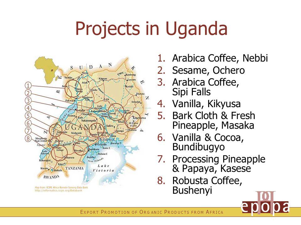 E X P O R T P R O M O T I O N O F O R G A N I C P R O D U C T S F R O M A F R I C A Projects in Uganda 1.Arabica Coffee, Nebbi 2.Sesame, Ochero 3.Arabica Coffee, Sipi Falls 4.Vanilla, Kikyusa 5.Bark Cloth & Fresh Pineapple, Masaka 6.Vanilla & Cocoa, Bundibugyo 7.Processing Pineapple & Papaya, Kasese 8.Robusta Coffee, Bushenyi