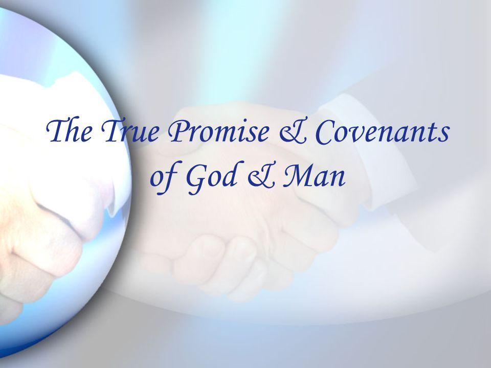 The True Promise & Covenants of God & Man