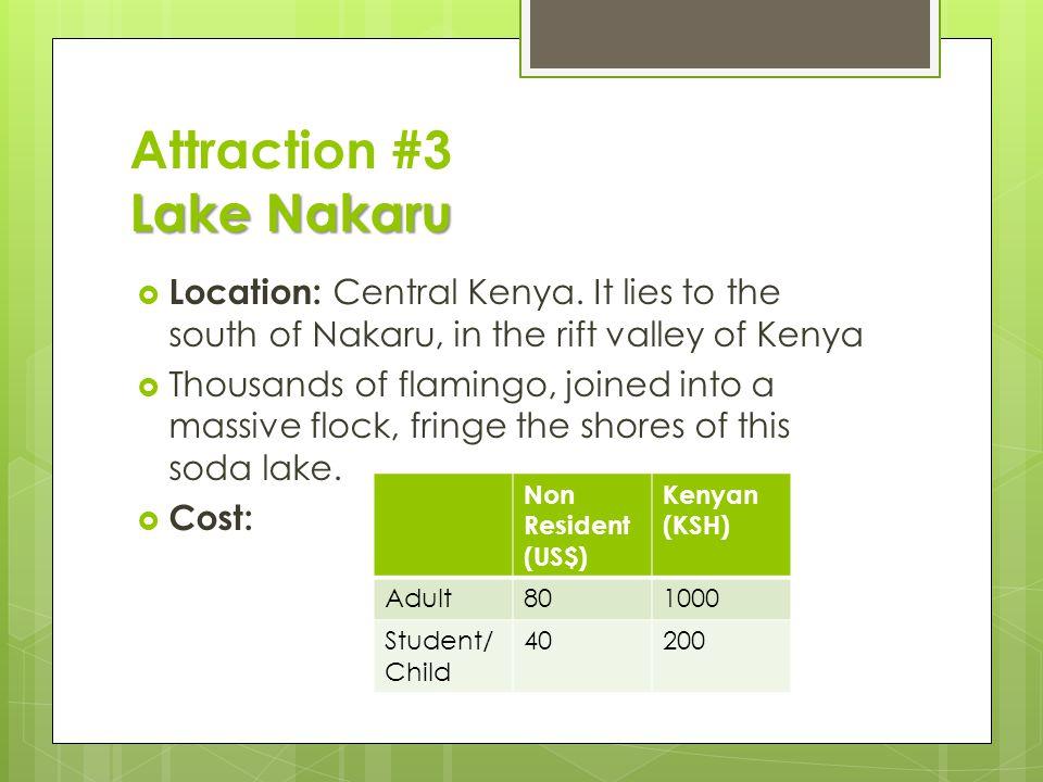 Lake Nakaru Attraction #3 Lake Nakaru  Location: Central Kenya. It lies to the south of Nakaru, in the rift valley of Kenya  Thousands of flamingo,