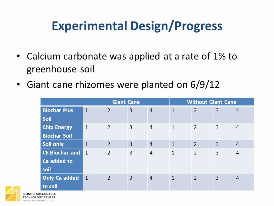 Experimental Design/Progress Calcium carbonate was applied at a rate of 1% to greenhouse soil Giant cane rhizomes were planted on 6/9/12 Giant CaneWithout Giant Cane Biochar Plus Soil 12341234 Chip Energy Biochar Soil 12341234 Soil only12341234 CE Biochar and Ca added to soil 12341234 Only Ca added to soil 12341234