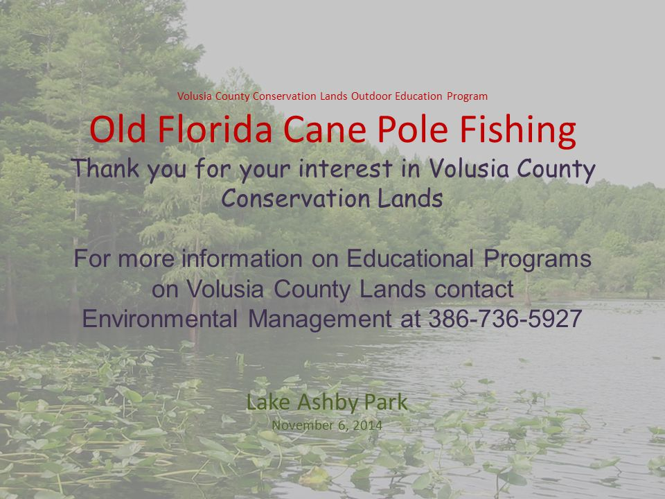 Volusia County Conservation Lands Outdoor Education Program Old Florida Cane Pole Fishing Thank you for your interest in Volusia County Conservation Lands For more information on Educational Programs on Volusia County Lands contact Environmental Management at 386-736-5927 Lake Ashby Park November 6, 2014