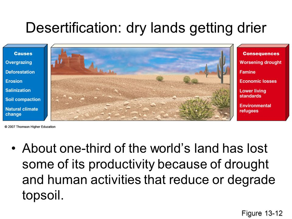 Desertification: dry lands getting drier About one-third of the world's land has lost some of its productivity because of drought and human activities that reduce or degrade topsoil.