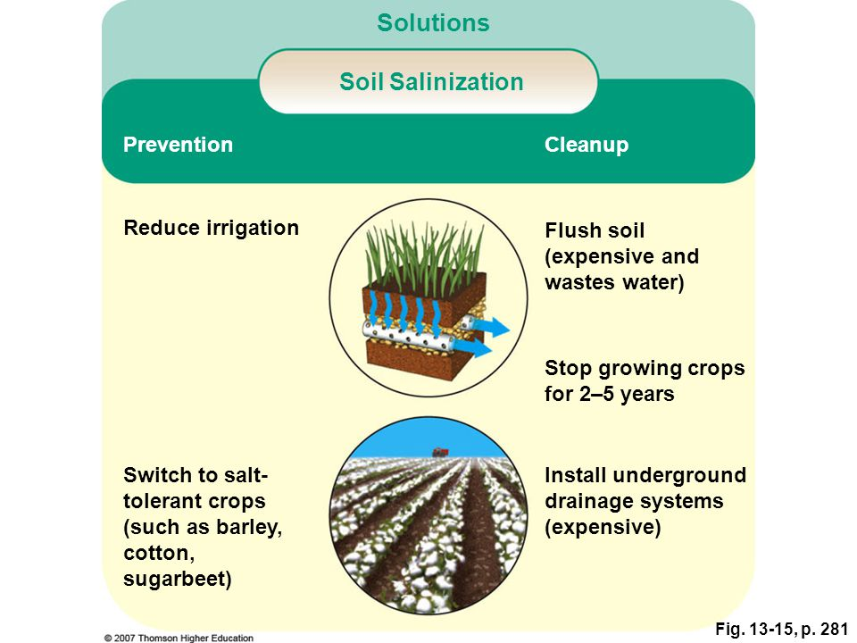 Fig. 13-15, p. 281 Cleanup Prevention Soil Salinization Solutions Reduce irrigation Switch to salt- tolerant crops (such as barley, cotton, sugarbeet)
