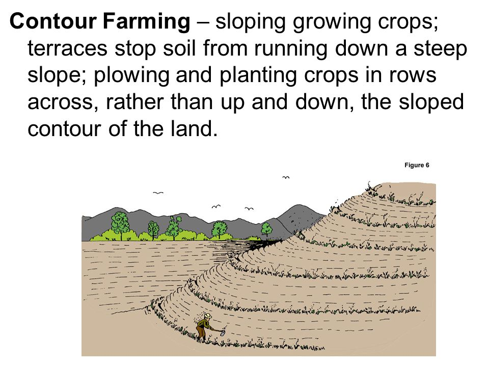 Contour Farming – sloping growing crops; terraces stop soil from running down a steep slope; plowing and planting crops in rows across, rather than up