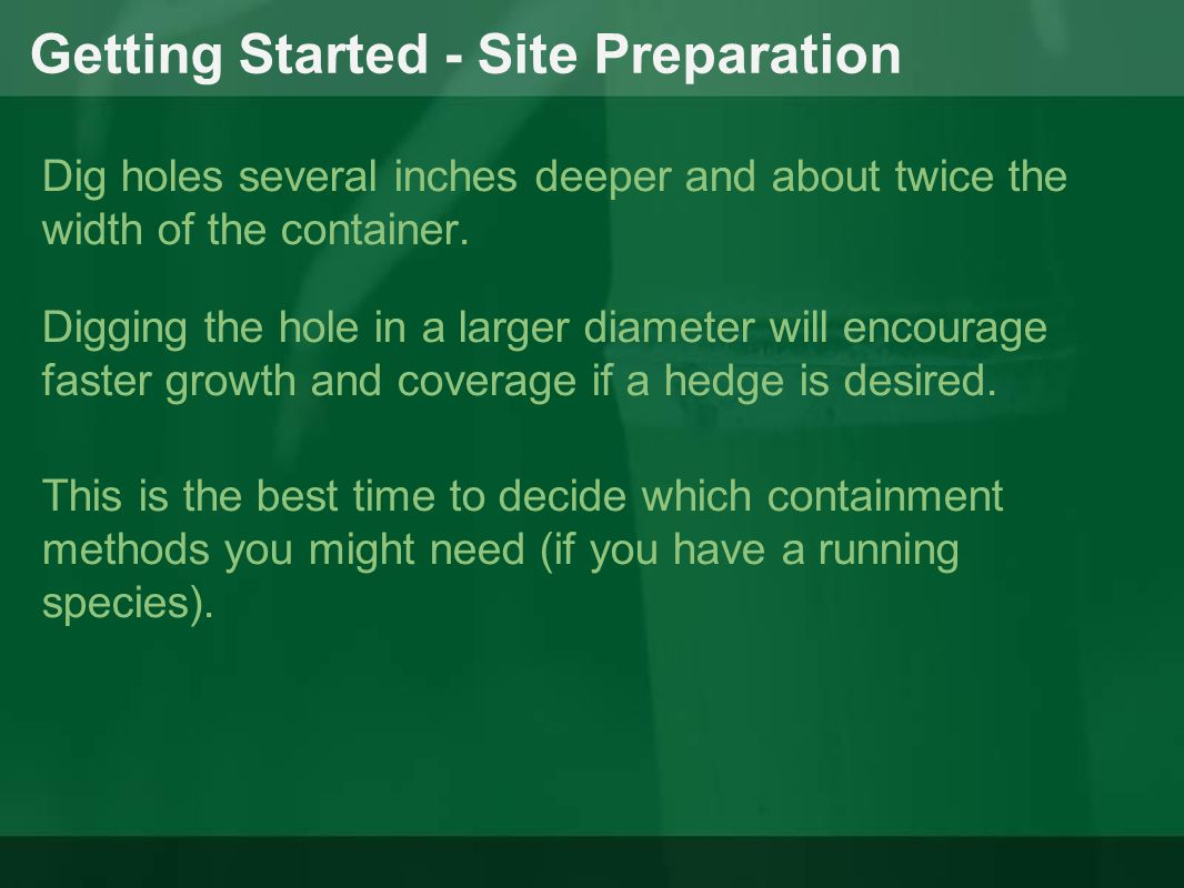 Getting Started - Site Preparation Dig holes several inches deeper and about twice the width of the container. Digging the hole in a larger diameter w