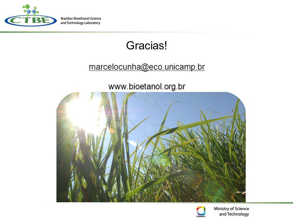 Gracias! marcelocunha@eco.unicamp.brwww.bioetanol.org.br