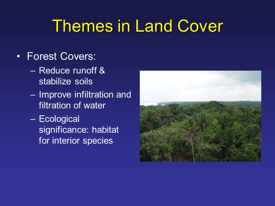 Themes in Land Cover Forest Covers: –Reduce runoff & stabilize soils –Improve infiltration and filtration of water –Ecological significance: habitat for interior species