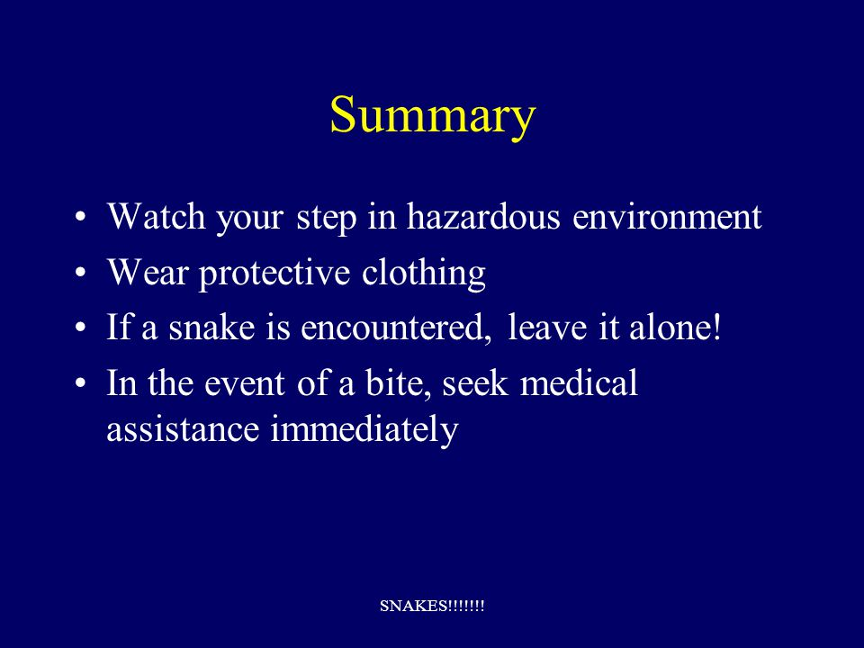 SNAKES!!!!!!.