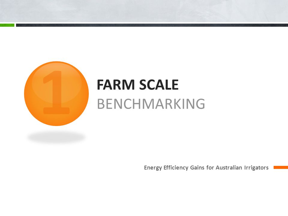 FARM SCALE BENCHMARKING Energy Efficiency Gains for Australian Irrigators 1