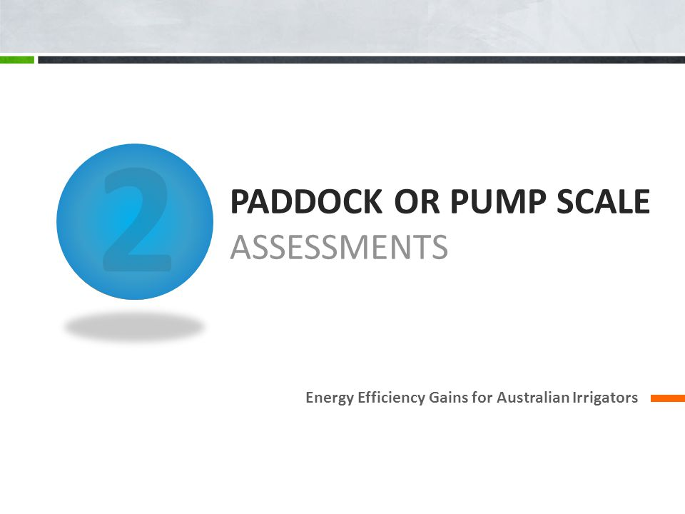 PADDOCK OR PUMP SCALE ASSESSMENTS Energy Efficiency Gains for Australian Irrigators 2