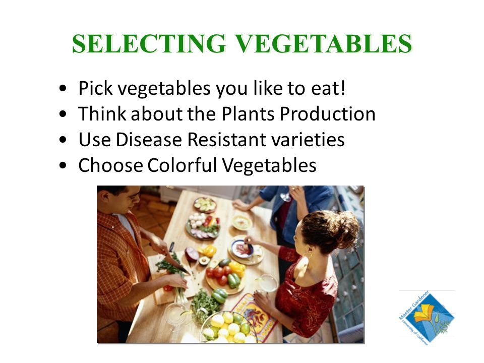 SELECTING VEGETABLES Pick vegetables you like to eat.