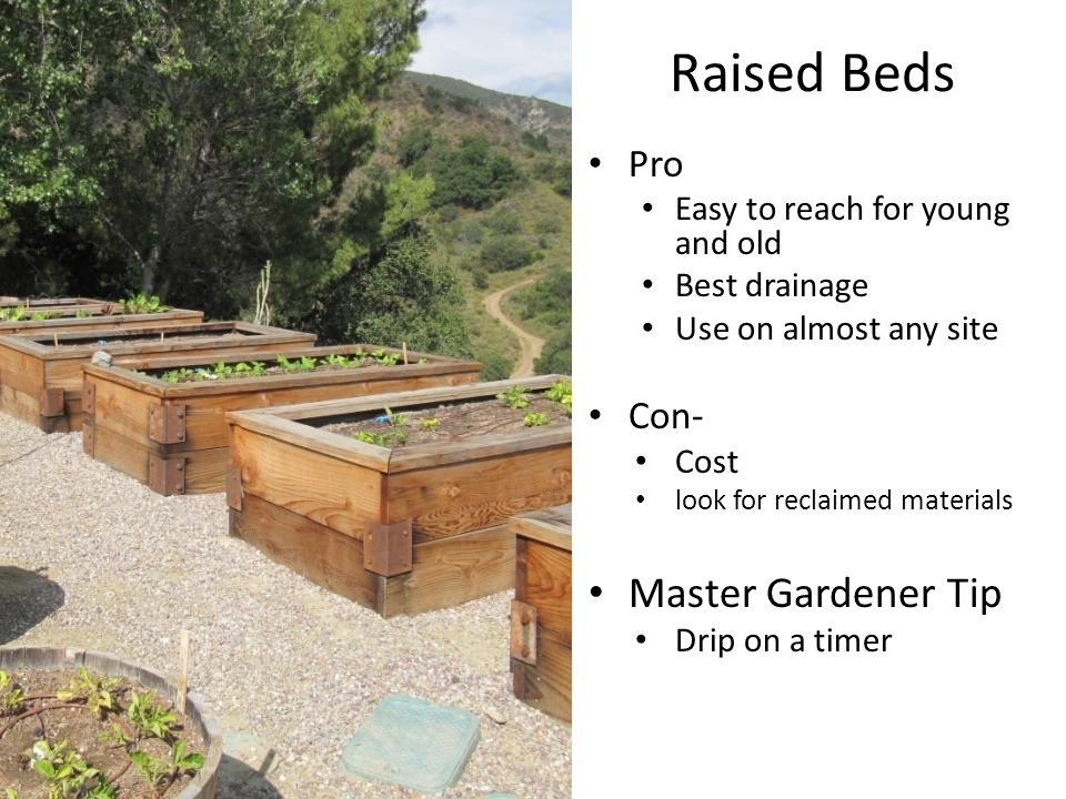 Raised Beds Pro Easy to reach for young and old Best drainage Use on almost any site Con- Cost look for reclaimed materials Master Gardener Tip Drip on a timer