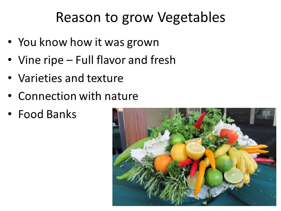Reason to grow Vegetables You know how it was grown Vine ripe – Full flavor and fresh Varieties and texture Connection with nature Food Banks