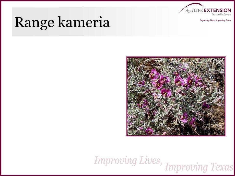 Range kameria
