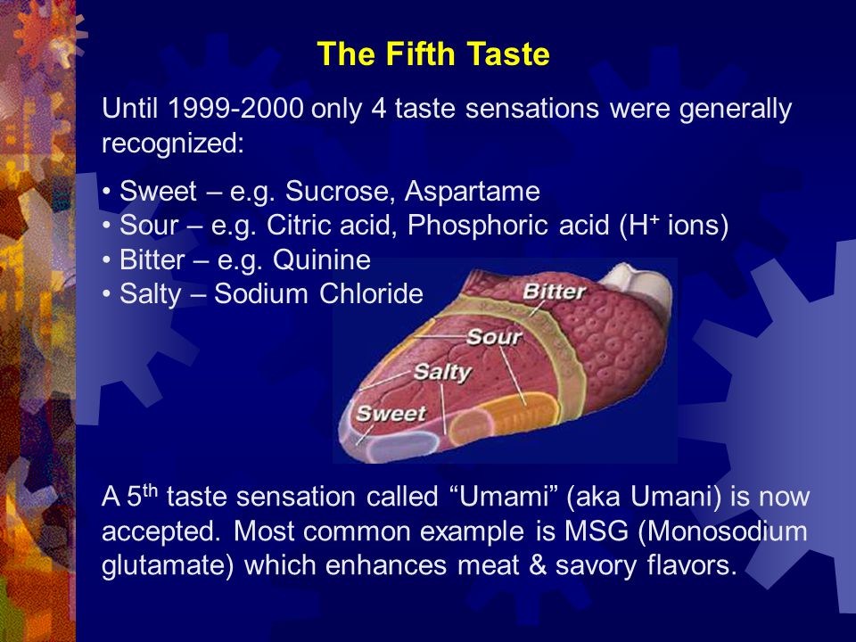 "A 5 th taste sensation called ""Umami"" (aka Umani) is now accepted. Most common example is MSG (Monosodium glutamate) which enhances meat & savory flav"