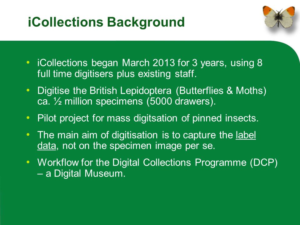 iCollections Background iCollections began March 2013 for 3 years, using 8 full time digitisers plus existing staff. Digitise the British Lepidoptera