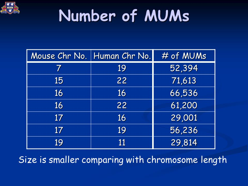 Number of MUMs Mouse Chr No. Human Chr No.