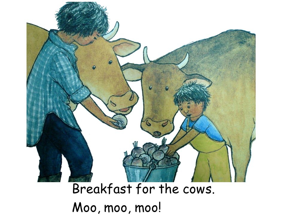 Breakfast for the cows. Moo, moo, moo!