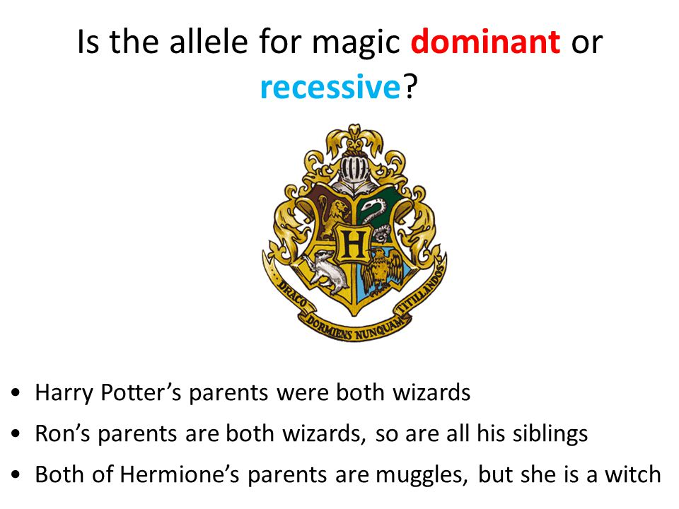 Is the allele for magic dominant or recessive.