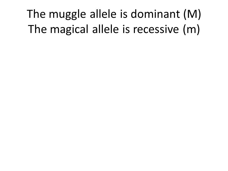 The muggle allele is dominant (M) The magical allele is recessive (m)