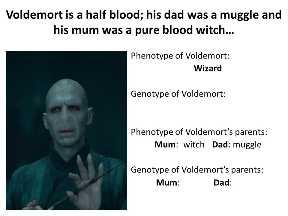 Voldemort is a half blood; his dad was a muggle and his mum was a pure blood witch… Phenotype of Voldemort: Wizard Genotype of Voldemort: Phenotype of Voldemort's parents: Mum:witch Dad: muggle Genotype of Voldemort's parents: Mum:muggleDad: wizard