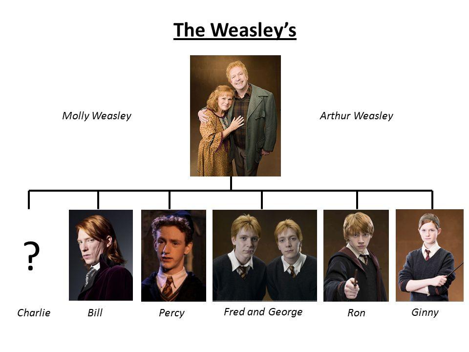 The Weasley's Molly WeasleyArthur Weasley CharlieBillPercy Fred and George Ron Ginny ?