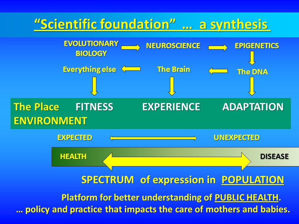 NEUROSCIENCE The DNA Everything else EVOLUTIONARYBIOLOGY The Place ENVIRONMENTEXPERIENCEFITNESSADAPTATION SPECTRUM of expression in POPULATION HEALTHD