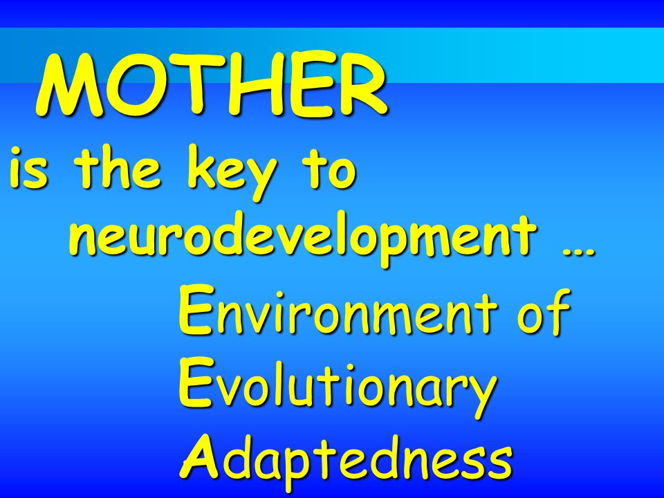 MOTHER is the key to MOTHER is the key to neurodevelopment … E nvironment of E volutionary A daptedness