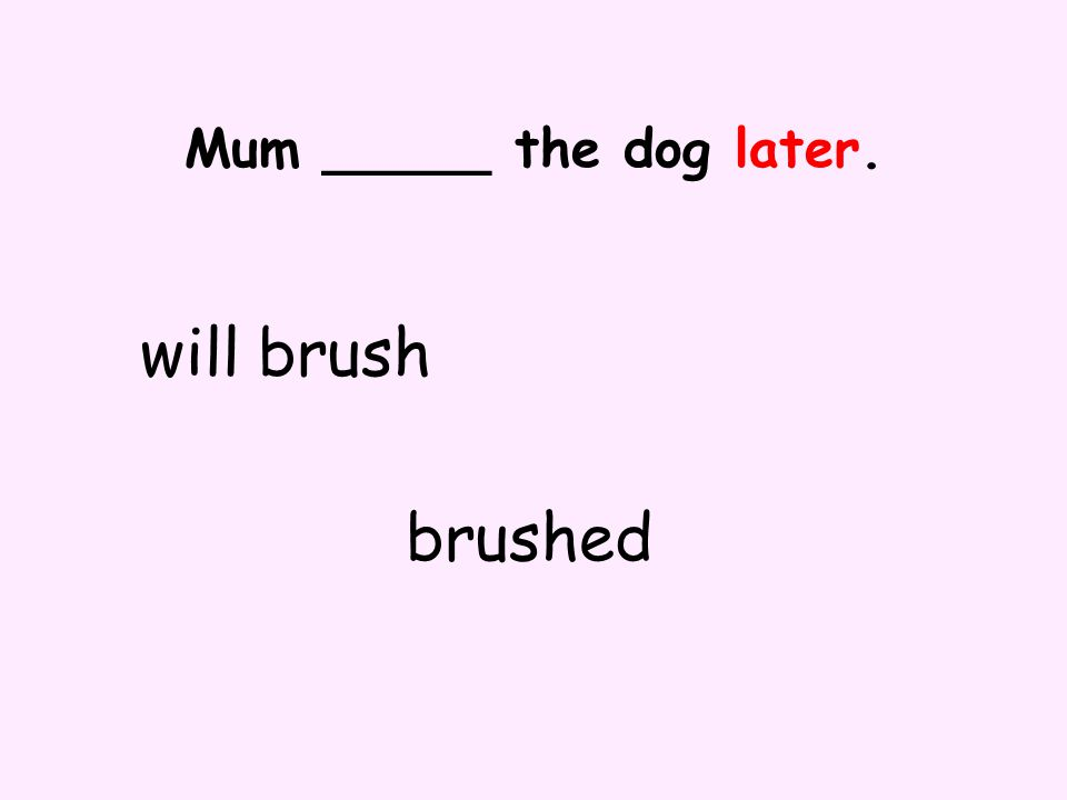 Mum _____ the dog later. will brush brushed